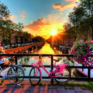 Beautiful sunrise over Amsterdam, The Netherlands, with flowers